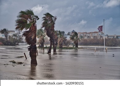 Dénia, Alicante, Spain 01/20/20 Storm Gloria sweeps sand and sea water from the beach across a road. Palm trees battered by high winds. A tattered flag at half mast. Distant hoilday apartments