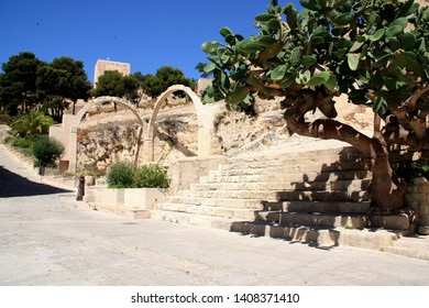 Alicante, Spain - June 22nd 2012: Ancient arches and a arborescent cactus within the premises of the Santa Bárbara Castle in Alicante, Spain