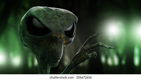 Alien and the forrest lights