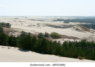 The alien landscape of the Curonian spit, settlement Rybachy, Zelenograd district, Kaliningrad region, Russian Federation