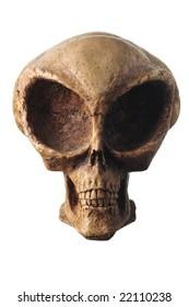 Alien skull isolated on white