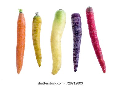 Alignment of heritage carrot varieties against white background