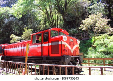 Alishan Forest Railway in Taiwan