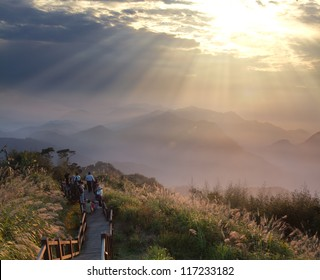 Alishan, gap the top Sunset, Taiwan