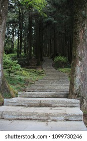 Alishan Hiking Trail in Taiwan