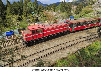Alishan, MAR 18: Red train and Cherry tree blossoms on MAR 18, 2012 at Alishan National Scenic Area, Taiwan