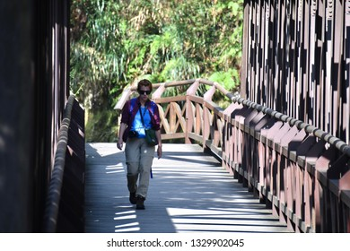 ALISHAN NATIONAL SCENIC AREA, TAIWAN - OCTOBER 1,2018: The traveller walking cross the bridge at the Alishan national scenic with green natural forest viewing, Chiayi