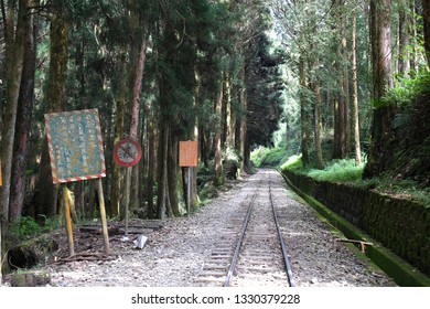 ALISHAN NATIONAL SCENIC AREA, TAIWAN - OCTOBER 1,2018: The train rail road at Alishan national scenic with forest and nice sky background, Chiayi