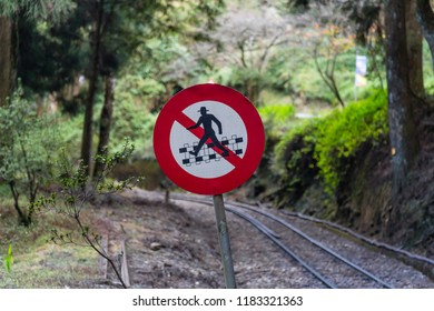 "Alishan, Taiwan - December 27 2015: ""No crossing"" sign at Sacred Tree Station (Zhushan Line) of the Alishan Forest Railway."