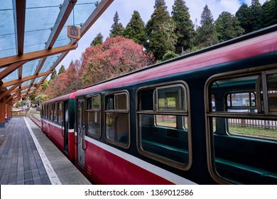 Alishan, Taiwan, December 6, 2018: Train at platfrom of Alishan forest railway station for go to Chaoping station in Alishan, Taiwan.