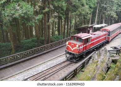 ALISHSN,TAIWAN - 12 MAR 2017:Alishan Train are entering at Sacred tree station in Alishan National Scenic Area,Taiwan