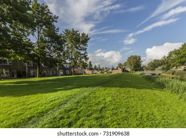Alkmaar green grass neighborhood on a beautiful sunny day