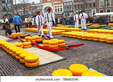 ALKMAAR, NETHERLANDS - April 11, 2013: The traditional Friday Cheese Market in the Waagplein square of Alkmaar attracts many tourists from all over the world