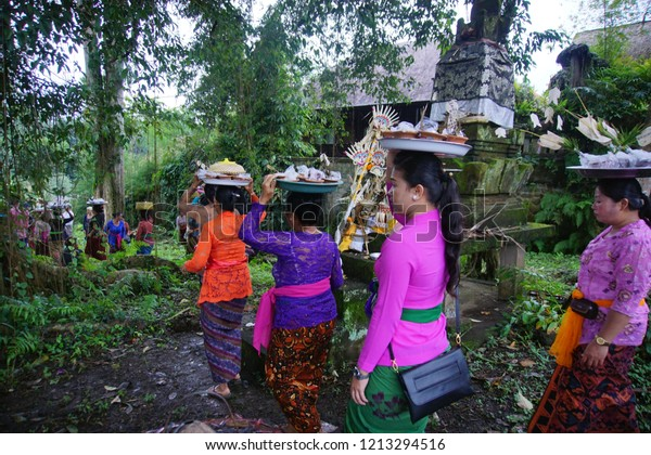 All People Ubud Villagebaliindonesia Giving Offering Stock