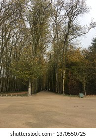 An allee of trees in the mid ground at Napolean's old hunting lodge in Versailles, France.