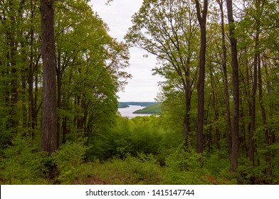 The Allegheny Reservoir in the distance seen through a break in the trees in the Allegheny National Forest in Warren County, Pennsylvania, USA on an overcast spring day
