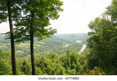 Allegheny River forest overlook