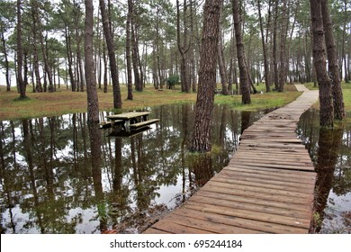 allegory of disaster, of catastrophe, of ruin,Wooden path on the lake water, Morouzos beach, Ortigueira, A Coruña, Galicia,Spain. Red nature,Flood, rains,visual allegories, visual metaphors,