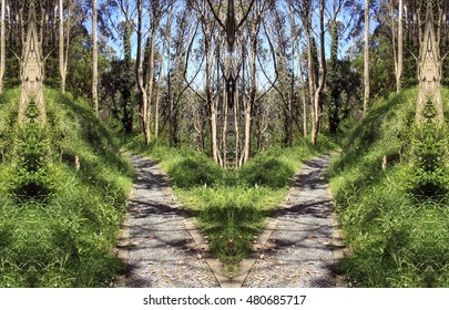 allegory of divorce, of rupture, of separation,allegory of doubt, Hamlet, indecision, vacillation dilemma,visual allegories, photographic  metaphors,Symmetrical landscape photography of the road,