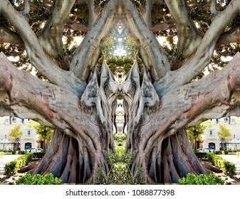 allegory of the entrance to hell, Symmetrical  photography of a large ficus tree, visual allegories, visual metaphors, photographic allegories, photographic metaphors,