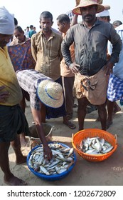 ALLEPPEY, INDIA - NOVEMBER 7, 2016: Indian fishermen selling fish at the morning market in Kerala state