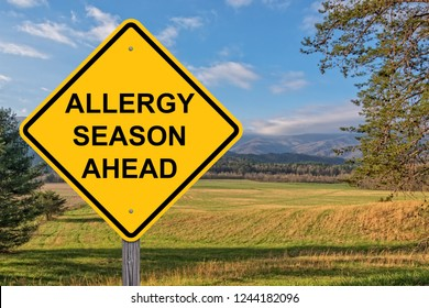 Allergy Season Ahead Caution Sign With Springtime Background