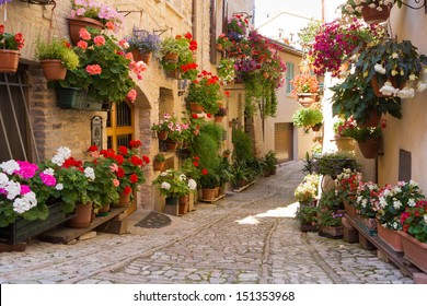 Alley with flowers