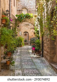 Alley with flowers, Spello