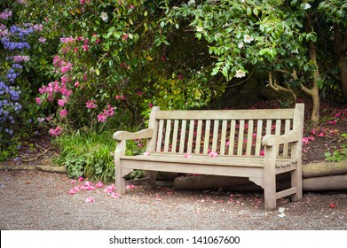 Alley and old wooden bench in park.