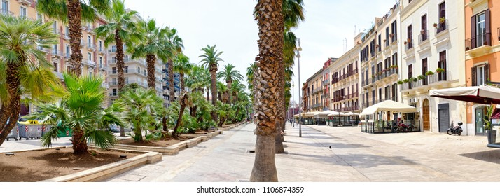 "Alley of palms on the street ""Corso Vittorio Emanuele"" at Bari, Italy"