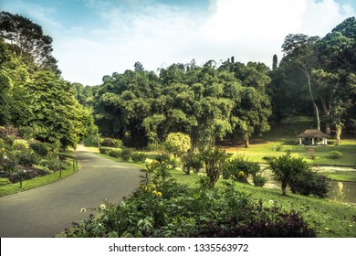 Alley in park garden with landscape design in Royal Garden Peradeniya in Sri Lanka nearby Kandy surroundings