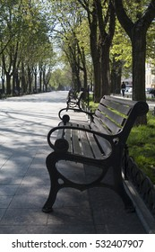 Alley in the Park. Morning, sunrise, bench.