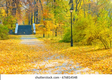 Alley with staircase in the autumn park with trees and fallen yellow leaves
