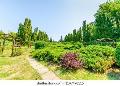 Alleys in the Botanical Garden in Iasi. Romania.
