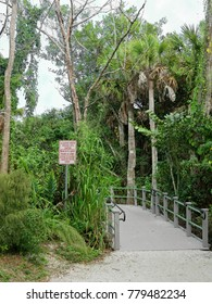 Alligator Habitat Proceed With Caution Sign Wildlife Refuge Sanibel Florida Bailey Homestead Preserve Trail