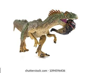 allosaurus  biting a dinosaur body with blood on white
