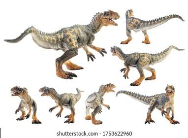 Allosaurus  ,dinosaur on white background