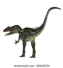 Allosaurus Dinosaur Tail 3d illustration - Allosaurus was a carnivorous theropod dinosaur that lived in North America in the Jurassic Period.