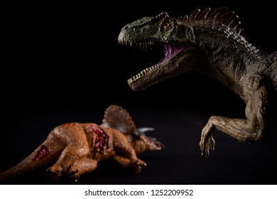 allosaurus  in front of a triceratops body on dark background