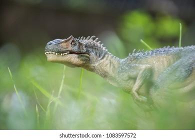 Allosaurus into wildness