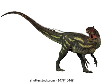 Allosaurus Isolated - Allosaurus was a large theropod predatory dinosaur which lived in the late Jurassic period.