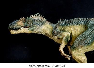 Allosaurus on black background