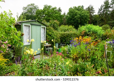 An allotment garden filled with flowers. A green wooden shed with green door and window in the background.
