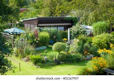 Allotment garden, very idyllic, green, flowers. Sunshine. Miniature.