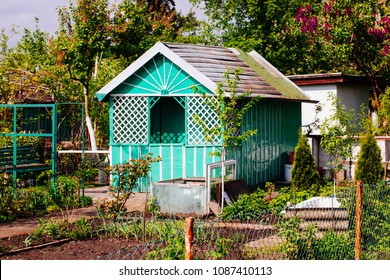 Allotment hut in the spring time