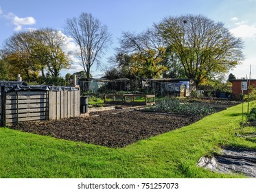 Allotment plot in autumn.  An allotment is a small plot of land where you grow your own vegetables.