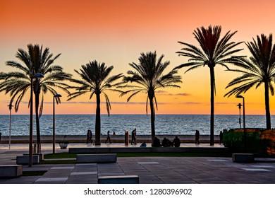 Almeria, Spain. Circa January 2019. Red sunset over the Mediterranean sea  with palm tree silhouettes in El Zapillo boardwalk in Almeria, Spain.