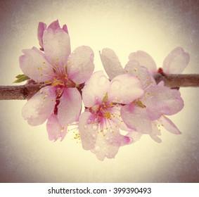 almond flower effect vintage