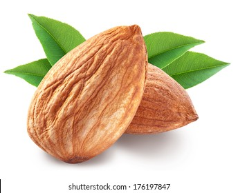 Almond nut with almond leaves isolated on white background. Image with maximum sharpness. Clipping path.