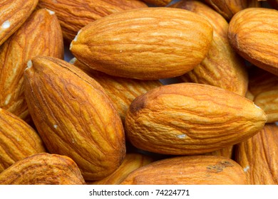 THE ALMOND, PRUNUS DULCIS AMYGDALES IS A SPECIES OF TREE NATIVE TO THE MIDDLE EAST AND SOUTH ASIA ALMOND IS ALSO THE NAME OF THE EDIBLE AND WIDELY CULTIVATED SEED OF THIS TREE